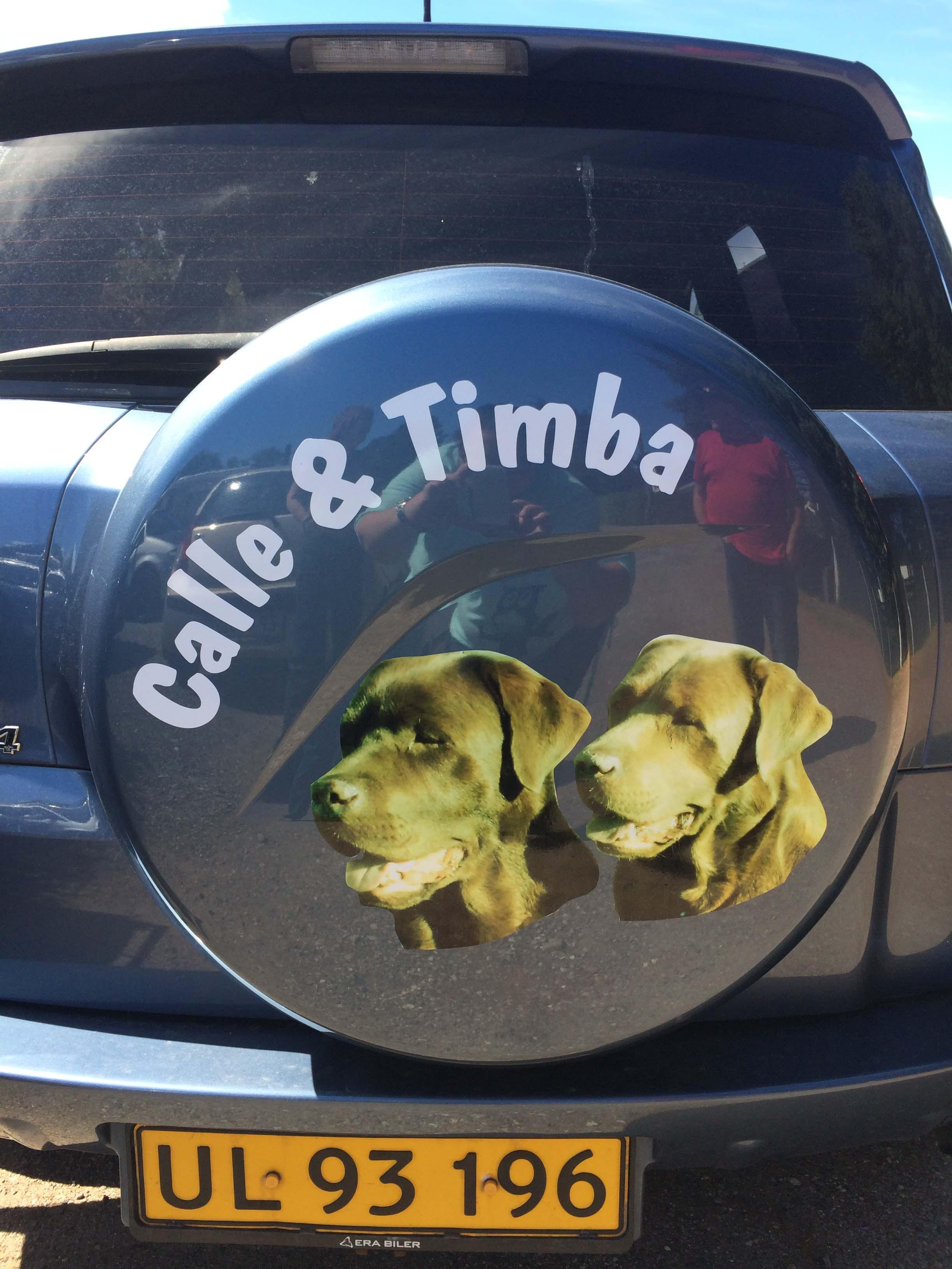 Calle og Timba